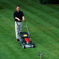 Lawn Mowing Hendon